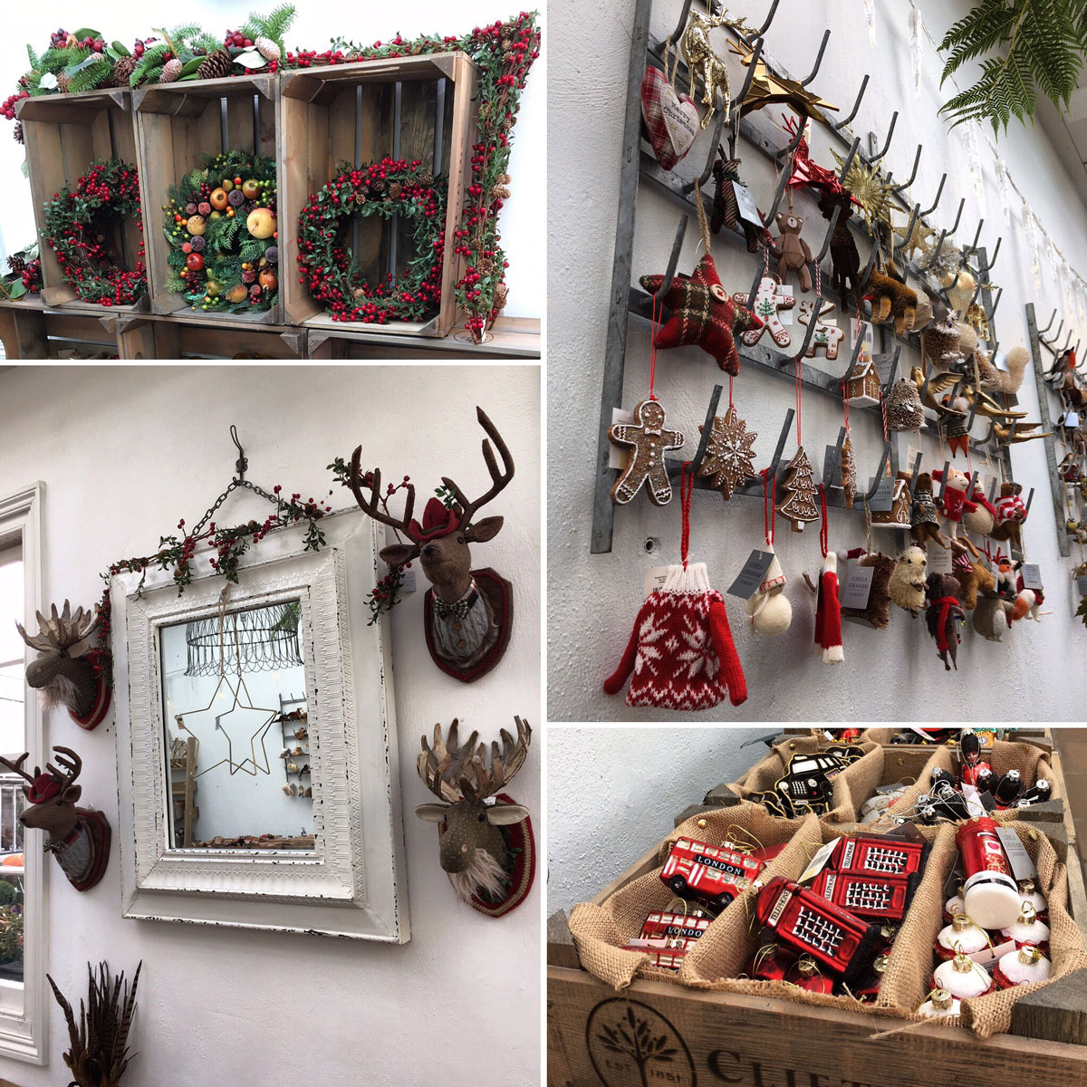 Clifton Nurseries Day 5 of #cliftonchristmas