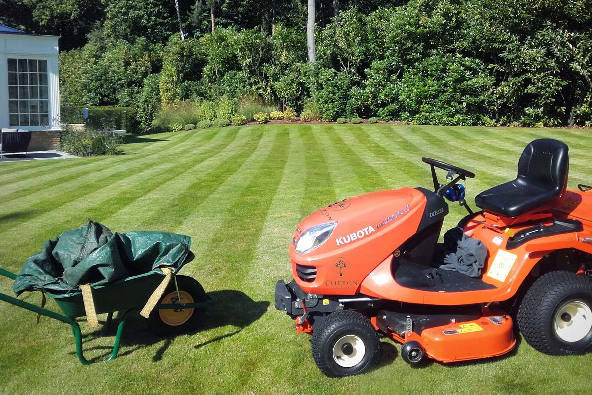 Maintaining lawns, borders and patios