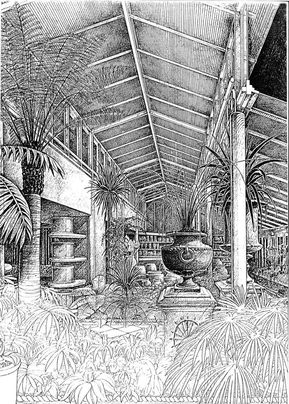 Clifton Nurseries History - Glasshouse