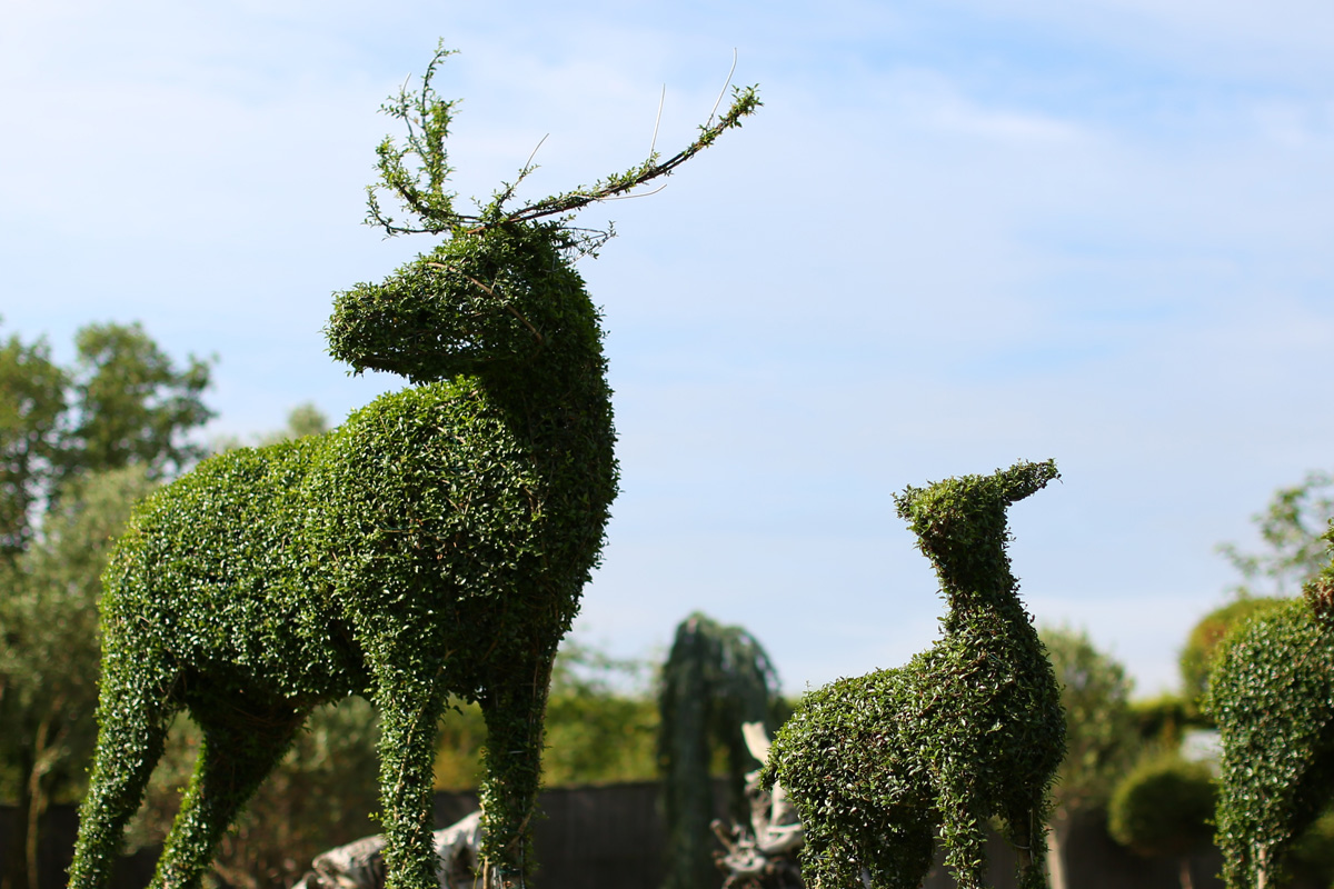 Topiary - Green Plant Sculptures