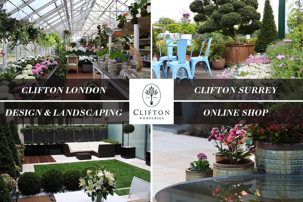 Clifton Nurseries Unite