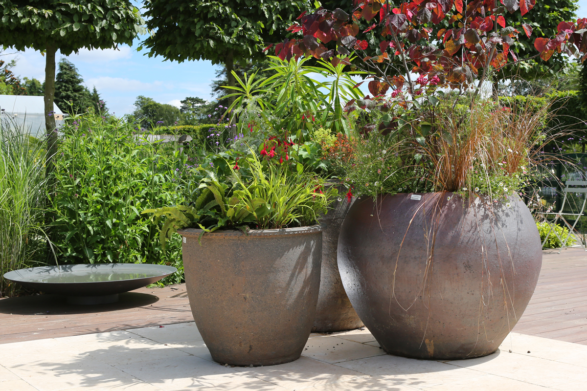 Large Pots and Planters at Clifton Nurseries