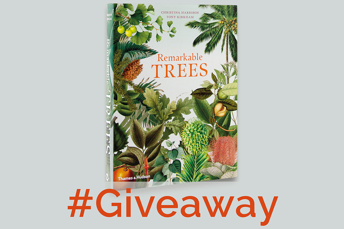 Instagram Giveaway of Remarkable Trees book