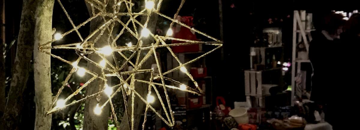 Clifton Nurseries Christmas Charity Fair