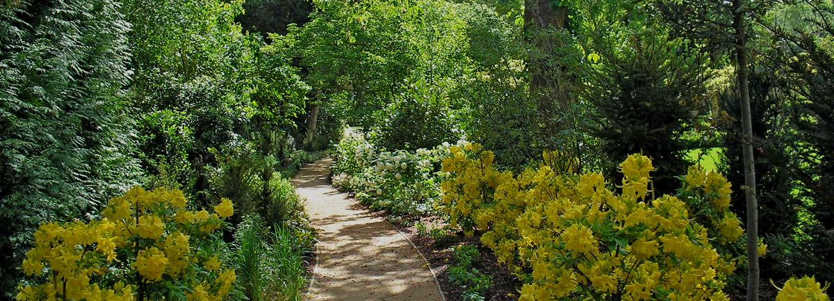 Clifton Nurseries - can we help with your dream garden