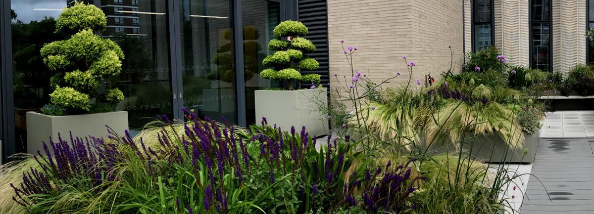 Job Vacancy -  Garden Maintenance Supervisor at Clifton Nurseries London