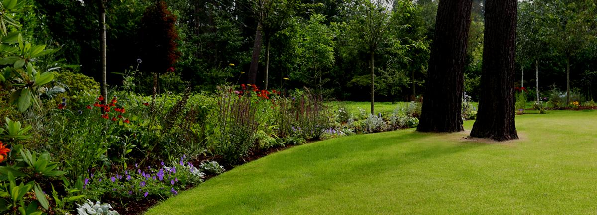 Clifton Nurseries Jobs - Gardening Assistant Surrey