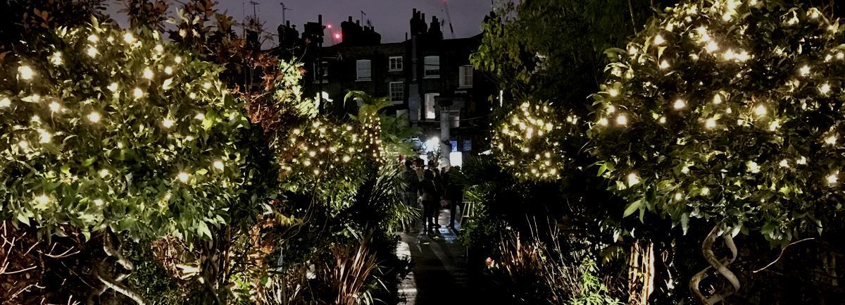 Clifton Nurseries Christmas Lights