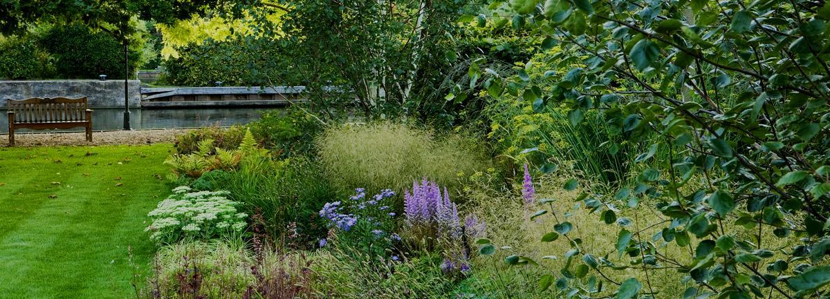 Job Vacancy - Soft Landscaping Foreman at Clifton Nurseries Surrey