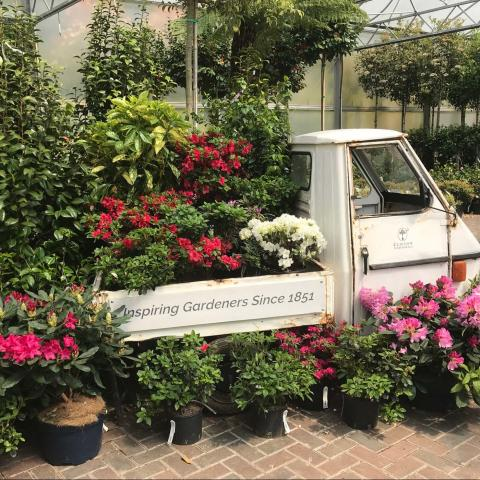 Clifton Nurseries are Reopening