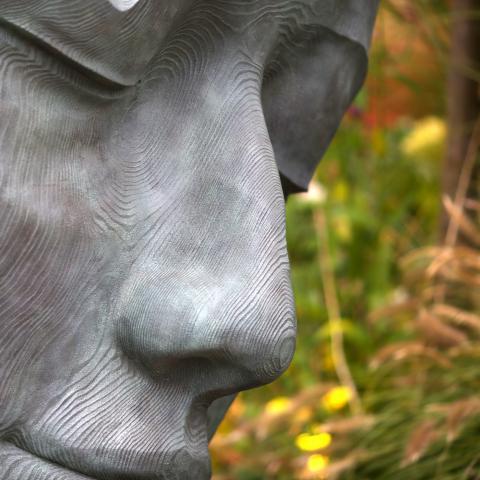The Fallen Deodar Garden Sculpture at Clifton Nurseries