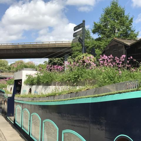 Clifton Nurseries Floating Meadow at Paddington Central