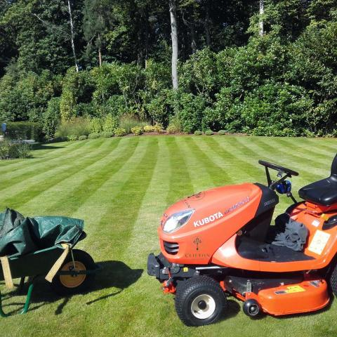 Clifton Nurseries Garden Maintenance - Lawncare