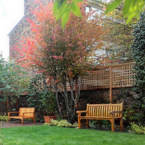 Clifton Nurseries - Small City Garden