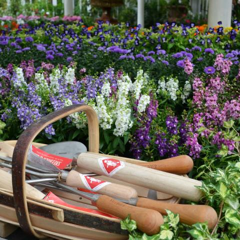 Sneeboer Tools at Clifton Nurseries