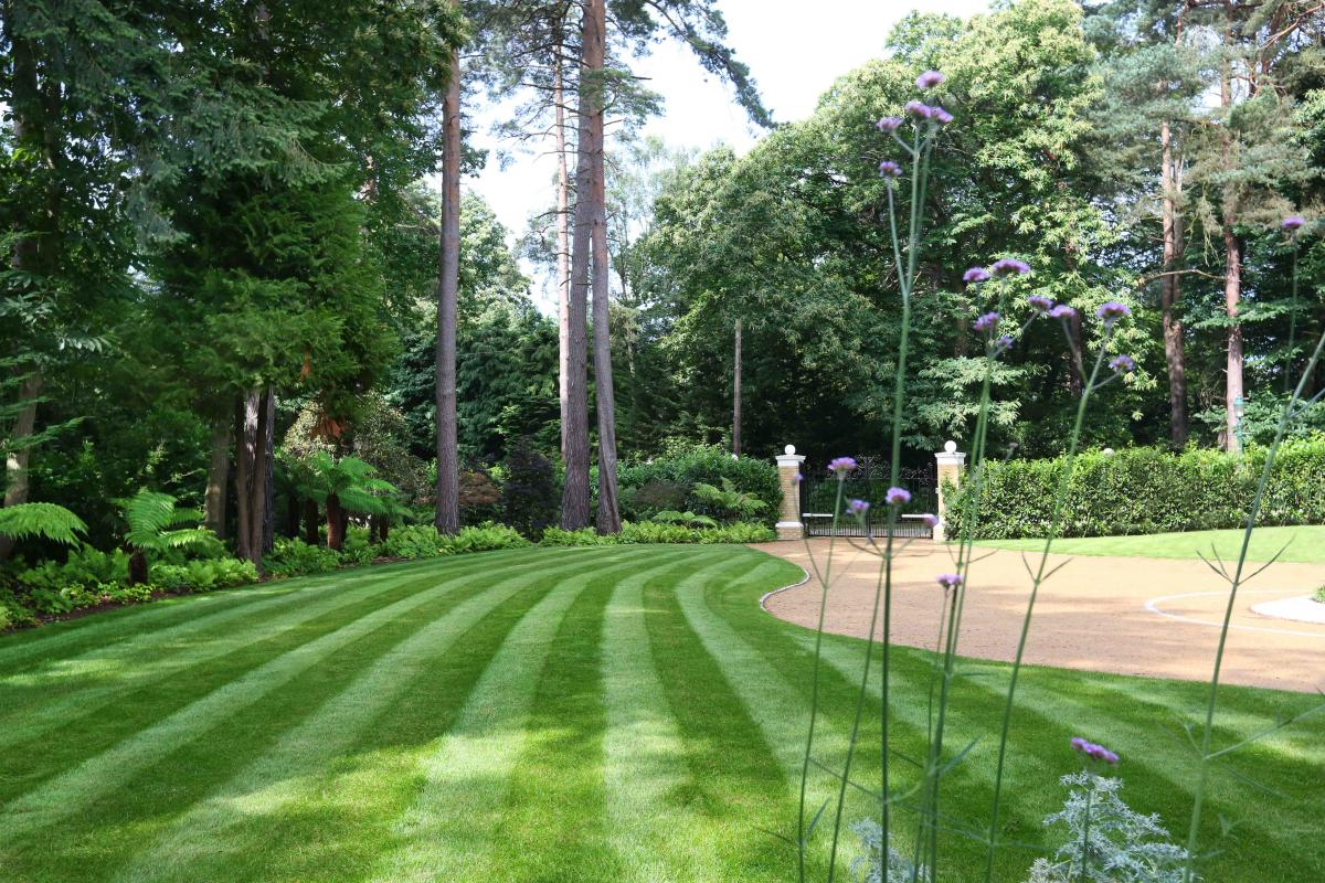 Clifton Nurseries Large Surrey Garden