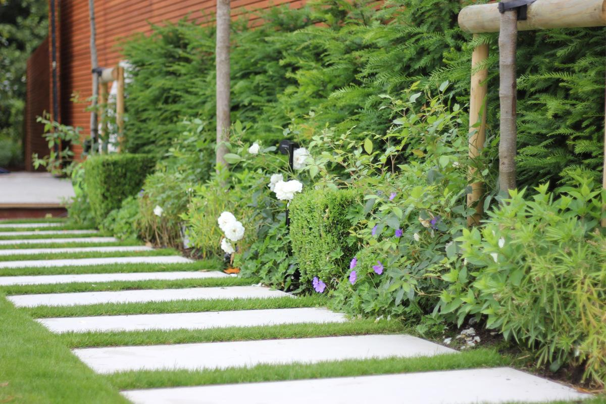 Contemporary Townhouse Garden - Pathway