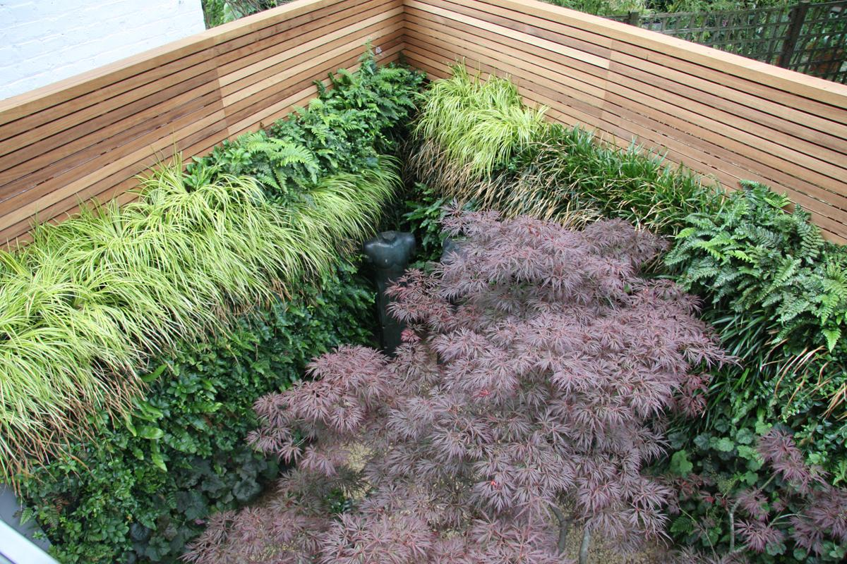 Clifton Nurseries Relaxing City Garden Green Wall