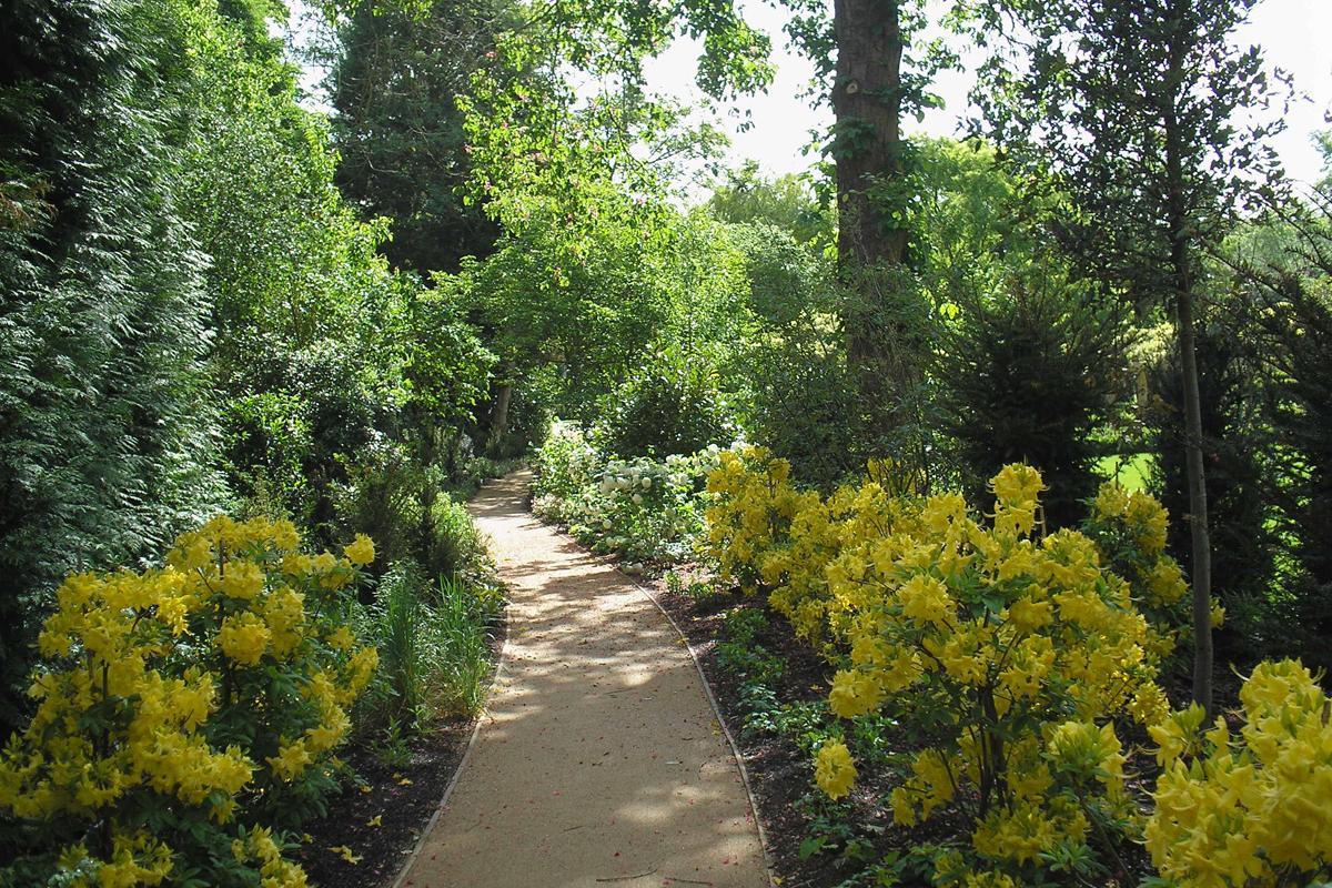 Large Country Garden Woodland Walk