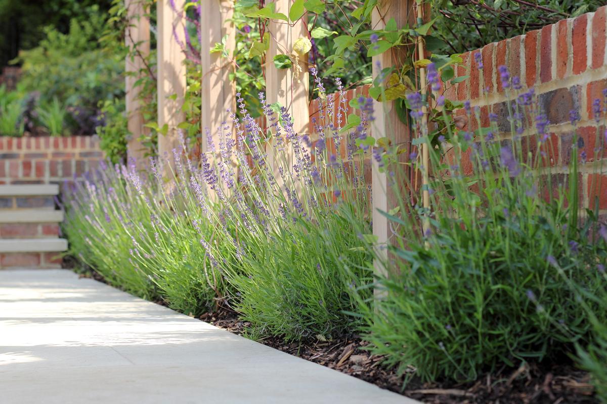 Large Surrey Garden Garden Path Details