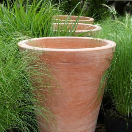 Clifton Nurseries Goicoechea Contemporary Vase in Natural