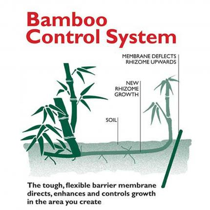 Clifton Nurseries Bamboo Root Control Instructions
