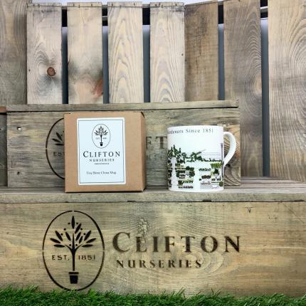 Clifton Nurseries Fine Bone China Mug