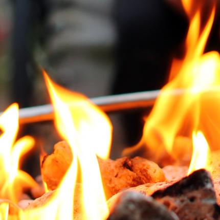 Clifton Nurseries Firepit Ash Rake - Flames