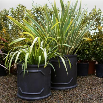 Clifton nurseries Clayfibre Chelsea Cylinder 45cm 55cm for your garden