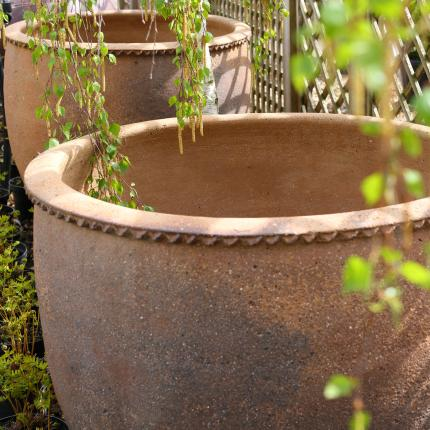 Clifton Nurseries pot company giant old ironstone large pot