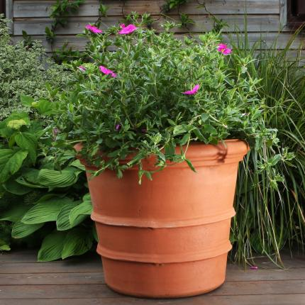 Clifton Nurseries Pot Company Terracino Florentine Pot