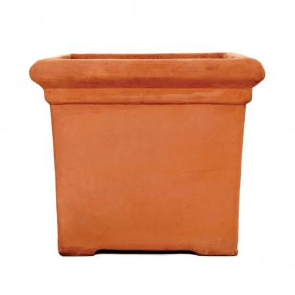 Clifton Nurseries terracino baytree square planter