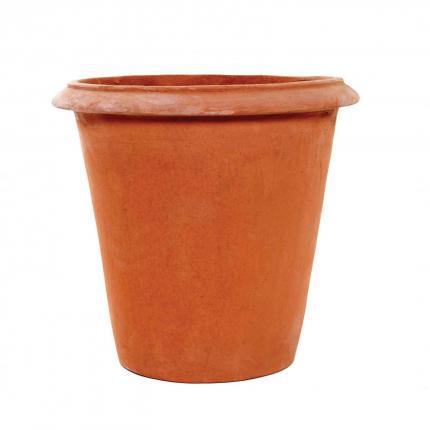 Clifton Nurseries pot company terracino camellia pot