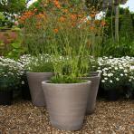 Clifton Nurseries Goicoechea Contemporary Vase D29cm in Grey