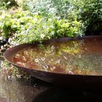 Clifton Nurseries - Corten Steel Water Bowl