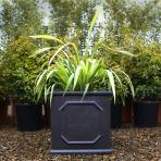 clifton nurseries clayfibre chelsea box 45cm