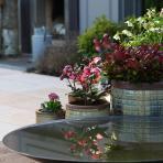 clifton nurseries yakuta water jars fuzhou for your garden