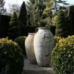 Clifton Nurseries Vintage Emperor Jar
