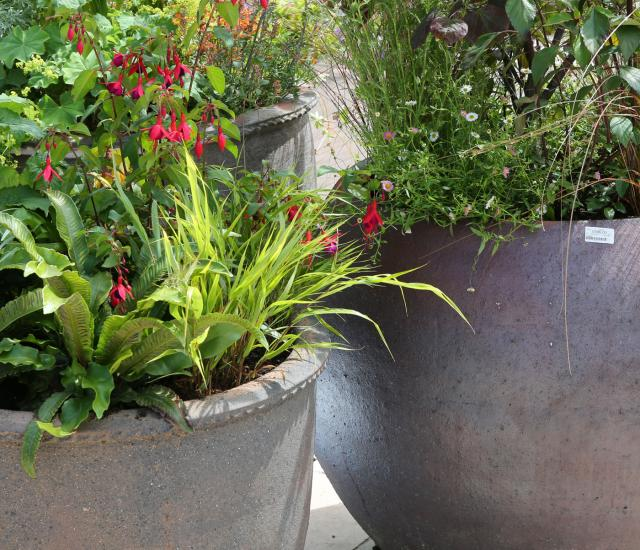 Clifton Nurseries Blog Pots and Planters