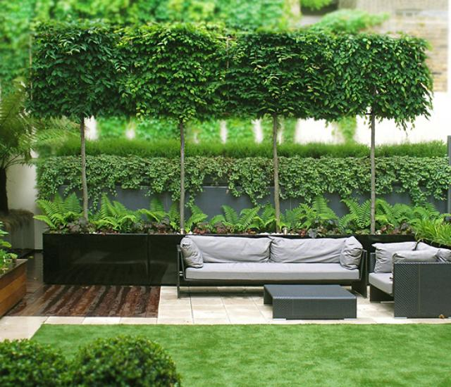 Clifton Nurseries - City Roof Garden