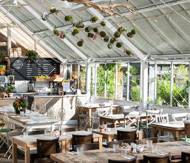 Clifton Nurseries Supper Club Instagram Giveaway