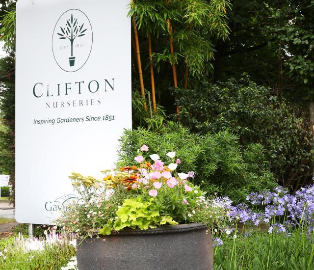 Clifton Nurseries Surrey Front Entrance