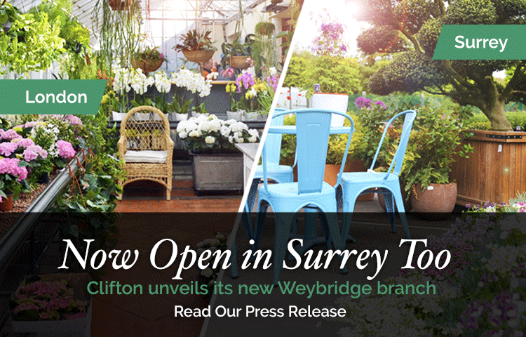 Clifton Nurseries - Now in Surrey Too