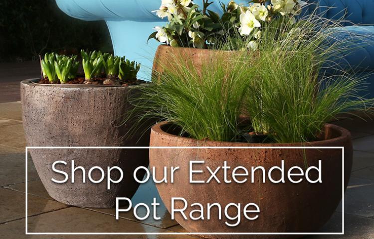 Clifton Nurseries Garden Pots & Planters