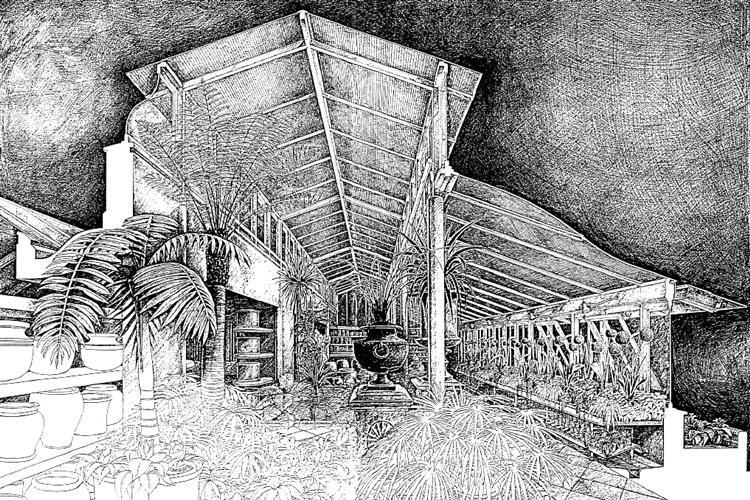 Clifton Nurseries History Palm House