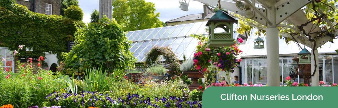 Clifton Nurseries - London's Hidden Oasis