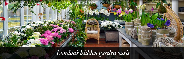 Clifton Nurseries - London's Hidden Oasis