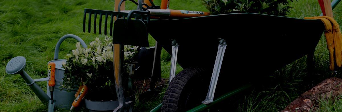 Clifton Nurseries Bulldog Tools Garden Rake 12 Tooth - Banner