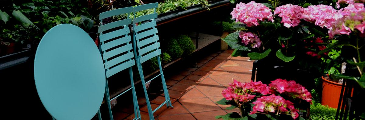 Clifton Nurseries Fermob Bistro Chair