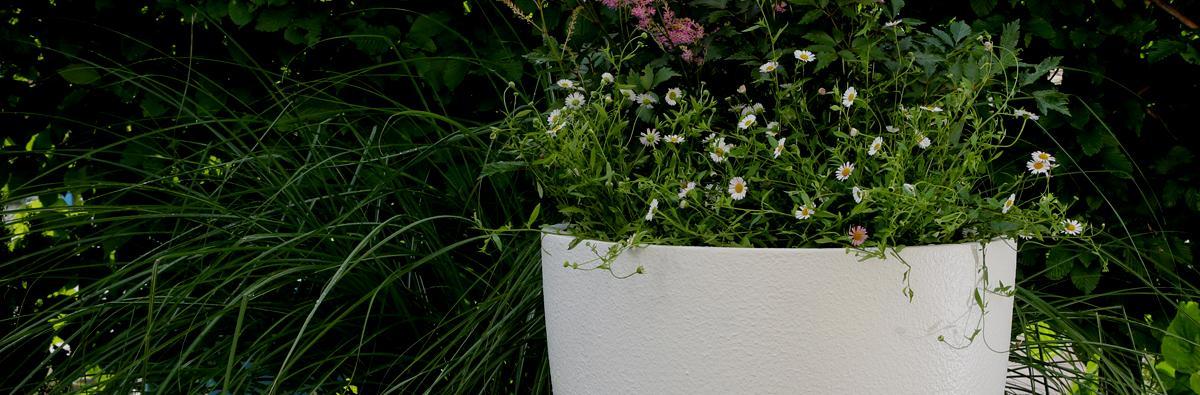 Clifton Nurseries Cirkik Pot Textured Brilliant White 52cm - Banner